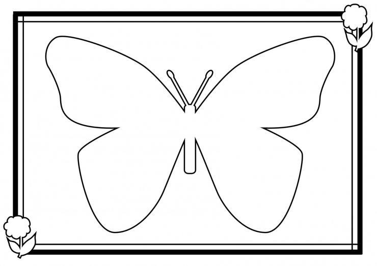 Coloriage papillon - Jeux de coloriage de papillon ...